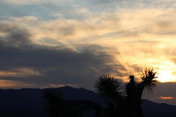 Sunset and sunrise photography-flowers-sunsets-067-copy.jpg