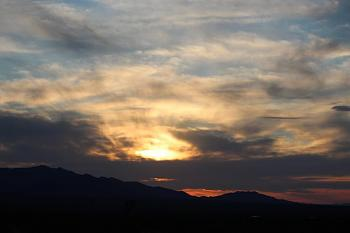 Sunset and sunrise photography-flowers-sunsets-100-copy.jpg
