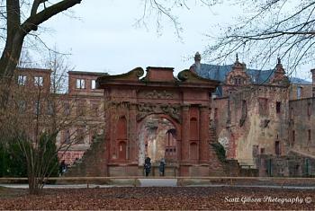 Heidelberg Castle-image-3252351910.jpg