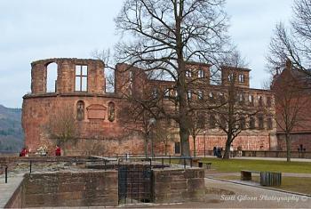 Heidelberg Castle-image-2821934853.jpg