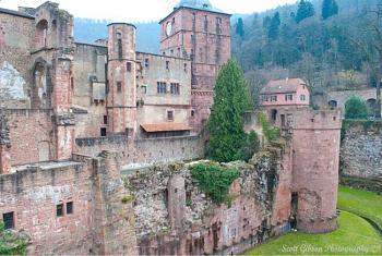 Heidelberg Castle-image-3706217191.jpg