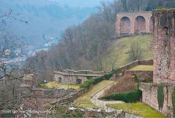 Heidelberg Castle-image-3685097503.jpg