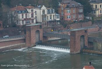 Heidelberg Castle-image-2104877926.jpg