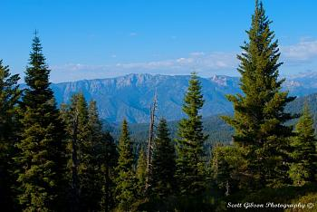Sequoia National Park-dsc_9392.jpg