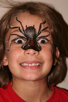 """Lets look at some """"butterflies"""" and other insects-spider4a.jpg"""