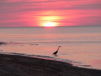 Sunset and sunrise photography-peix4.jpg