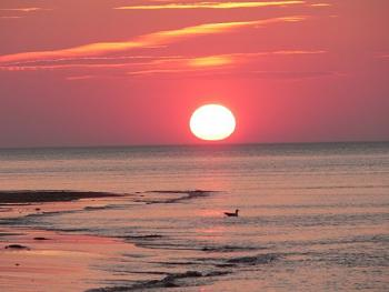 Sunset and sunrise photography-peix5.jpg