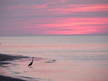 Sunset and sunrise photography-peix6.jpg
