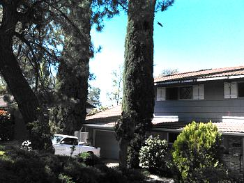 Bought Another House to Flip-7752-palmyra-4.jpg