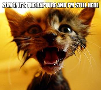 Words of Warning: Time?s Up-zomg_its_the_rapture_and_im_still_here_trollcat.jpg