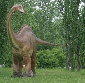 Two by two:-03_diplodocus2.jpg