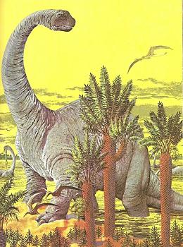 Two by two:-apatosaurus.jpg
