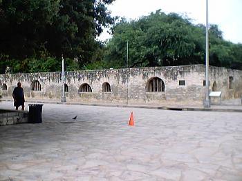 Alamo-alamo-05.jpg