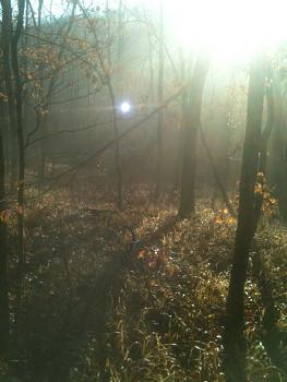 ball lightning-ball-lighting-sunday-deer-hunt.jpg