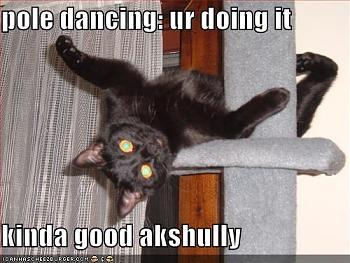 Pole Dancing-poledancingur1jpg.jpg