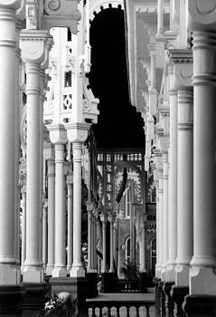 Tampa Pics!-ut-columns.jpg