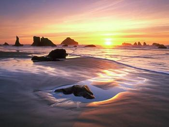 Why George moved to the City-bandon-oregon.jpg