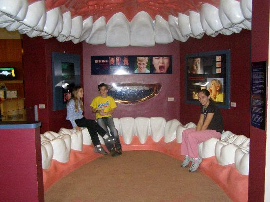 Houston, Texas: The Health Museum photo, picture, image