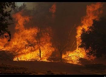 Pics of the Texas Fires-huge.jpg