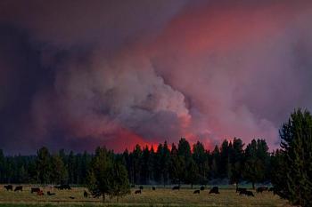 Pics of the Texas Fires-bn-6sm.jpg