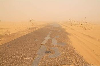 Locusts are next-road-sandstorm-4.jpg