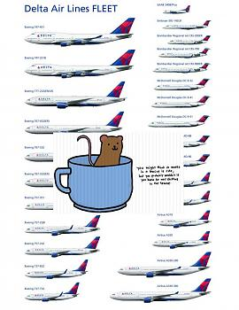 Delta offers No Fees mouse poop-delta-air-lines-complete-fleet_50.jpg
