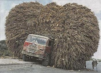 Transportation-heavy_load_on_truck_cranes_sugarcane_india.jpg