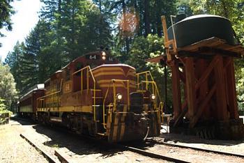 Trains trains & trains-skunk-train.jpg