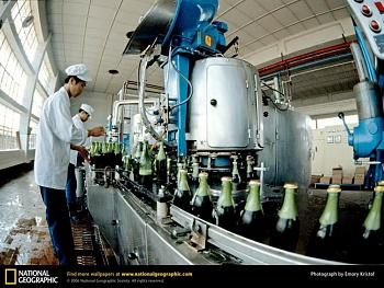 Views of Qingdao...-beer-factory-.jpg