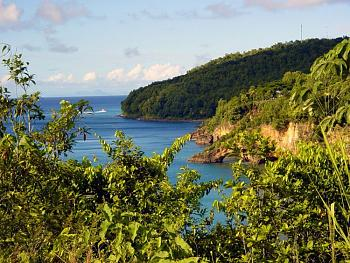 "A few photos of the ""Island of St. Lucia""...West Indies..a great place to visit.-dsc05431_edited.jpg"