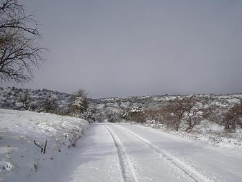 Snow hunting...-20110227_snowday_83.jpg