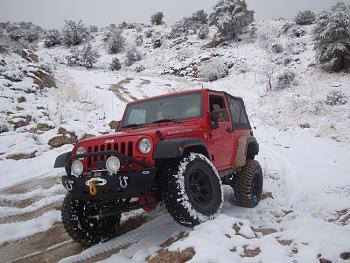 Snow hunting...-20110227_snowday_90.jpg