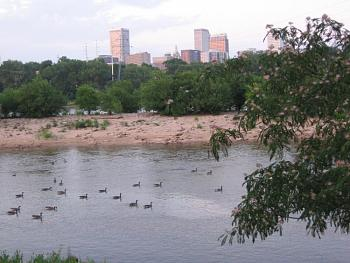 Tulsa-canadian-geese-river-skyline-view.jpg