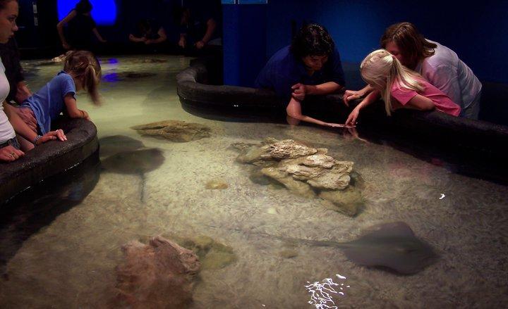 Living Planet Aquarium Sandy Utah