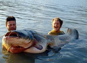 Blue catfish catch a Virginia record-giantcatfish.jpg