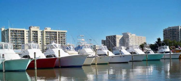 Virginia beach virginia virginia beach fishing center for Va beach fishing center
