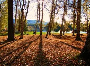 Post your Washington Photography.-ione-park.jpg