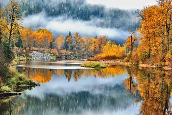 Post your Washington Photography.-fallcolorsonpor.jpg