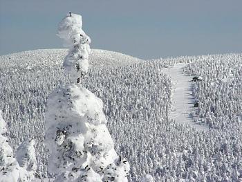 skiing-dsc01578b_size800.jpg