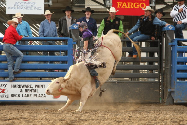 Cody Wyoming Cody Stampede Rodeo Photo Picture Image