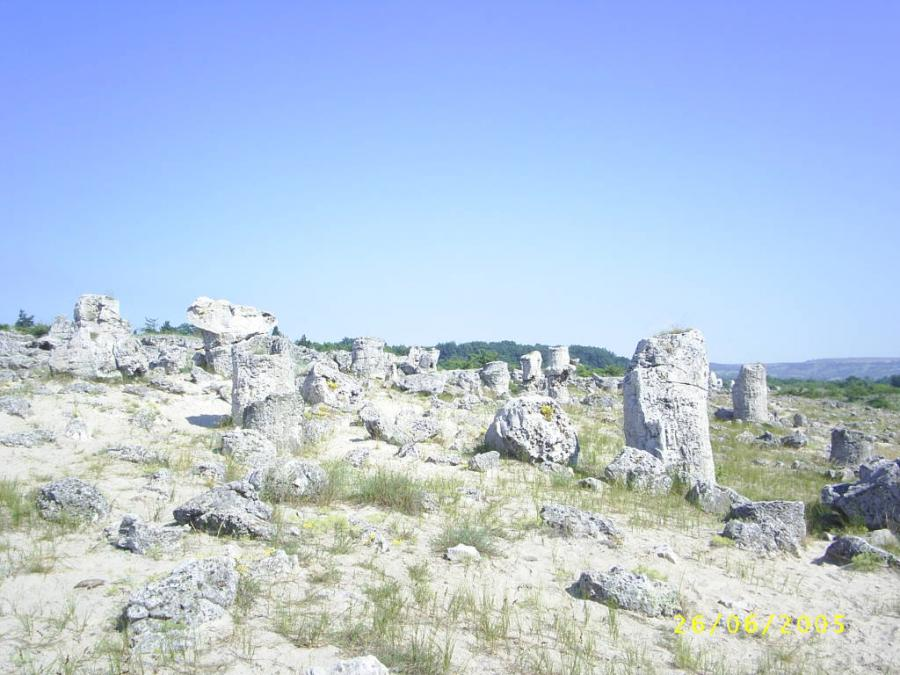 The stone wood near Varna town.