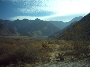 Cougar Canyon, Anza Borrego