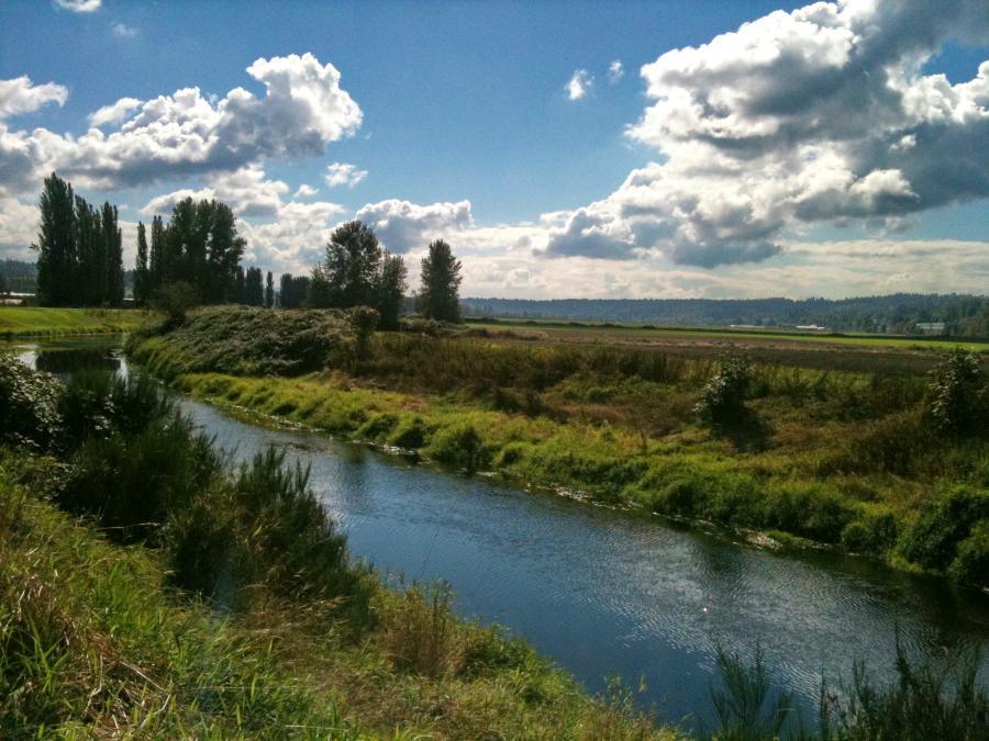 Sammamish river trail city profile gallery for Lake sammamish fishing