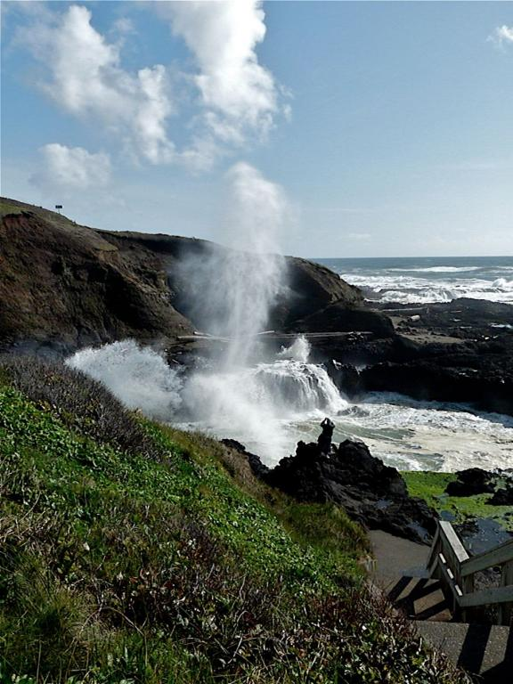 Spouting Horn At Cape Perpetua
