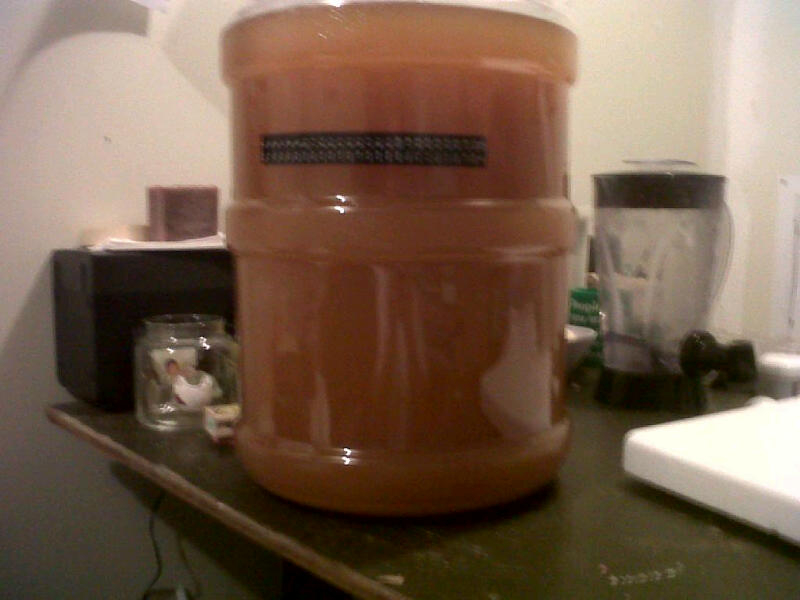 Pumpkin Ale Secondary