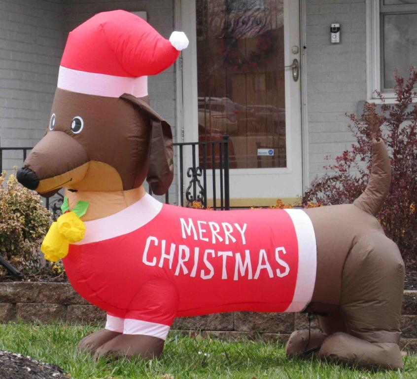 Cheviot--dachshund inflatable